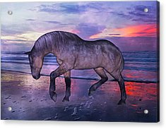Early Morning Hours Acrylic Print