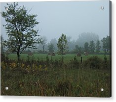 Early Morning In The Country Acrylic Print by Margaret McDermott