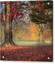 Early Morning In The Park Square Acrylic Print by Bill Wakeley