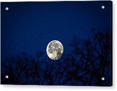 Early Morning Moon Acrylic Print