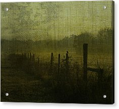 Early Morning Acrylic Print