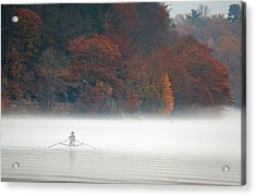 Early Morning Row Acrylic Print by Karol Livote