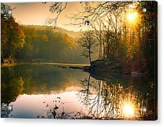 Early Morning Acrylic Print by Vincent  Dale