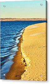 Early Morning Walk Acrylic Print by Bill Kesler