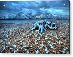 Early Snow On The Tetons Acrylic Print