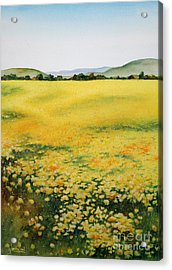 Early Spring Near Half Moon Bay Acrylic Print