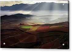 Early Spring On Red Land Acrylic Print