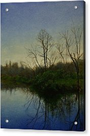 Early Spring Acrylic Print by Wayne Daniels