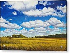 Early Summer Clouds Acrylic Print by Leonard Heid