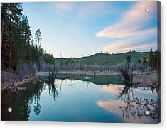 Early Sunset On A Beaver Pond  Acrylic Print by Omaste Witkowski