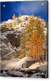 Early Winter Acrylic Print by Inge Johnsson