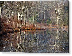 Early Winter Reflects Acrylic Print by Karol Livote