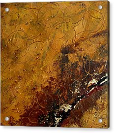 Earth Abstract Two Acrylic Print by Lance Headlee