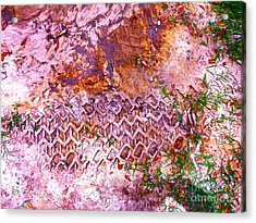 Earth Map 1 Acrylic Print by Chuck Taylor