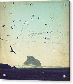 Earth Music Acrylic Print by Lupen  Grainne