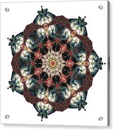 Earth Nest Acrylic Print by Lisa Lipsett