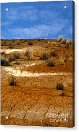 Earth Acrylic Print by Nur Roy