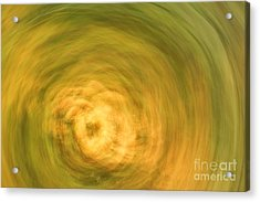 Earthly Whirlpool Acrylic Print by Imani  Morales