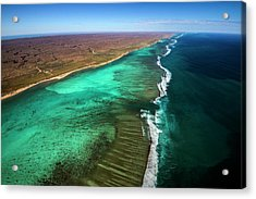 East And West Ningaloo Acrylic Print by Migration Media - Underwater Imaging