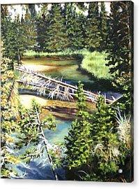 East Rosebud Inlet Stream Acrylic Print