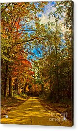East Texas Back Roads Hdr Acrylic Print