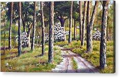 East Texas Dogwood Acrylic Print by Bob Hallmark