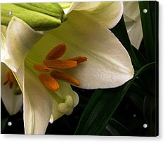 Easter 2014-4 Acrylic Print by Jeff Iverson