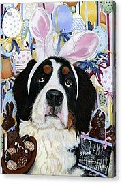 Easter Berner Bunny Duties Acrylic Print by Liane Weyers