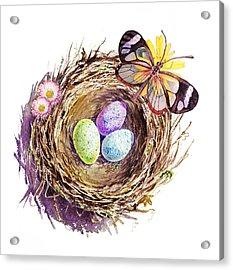 Easter Colors Bird Nest Acrylic Print by Irina Sztukowski