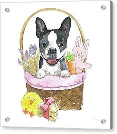 Easter Pups Vii Acrylic Print