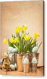Easter Setting Acrylic Print by Amanda Elwell