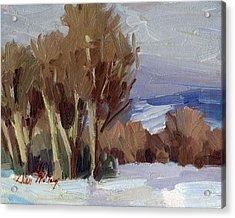 Eastern Washington Winter Acrylic Print by Diane McClary