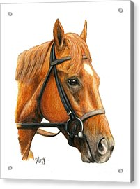 Easy Goer Acrylic Print by Pat DeLong