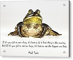Eat Frog Acrylic Print by John Crothers