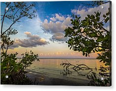 Ebb And Flow Acrylic Print by Marvin Spates