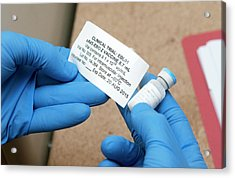 Ebola Vaccine Acrylic Print by Rob Judges/oxford University Images