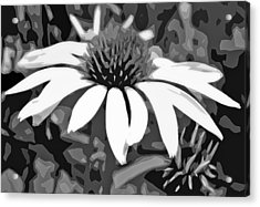 Acrylic Print featuring the photograph Echinacea - Digital Art by Ellen Tully