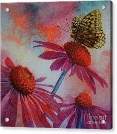Echinacea Fritillaria Acrylic Print