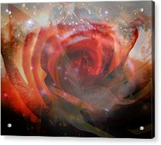 Echoes Of The Rose Acrylic Print by Judy Paleologos