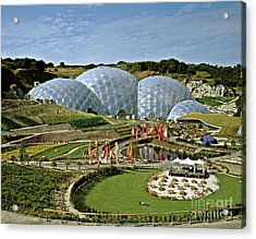 Eden Project 2002 Acrylic Print by David Davies