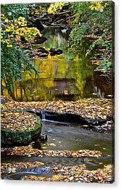 Eden Acrylic Print by Frozen in Time Fine Art Photography