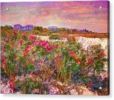 Edgartown Shoreline Roses - Horizontal  Acrylic Print