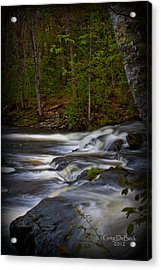 Edge Of The Stream Acrylic Print