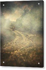 Edge Of The World Acrylic Print by Taylan Apukovska