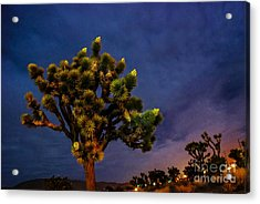 Edge Of Town Acrylic Print by Angela J Wright