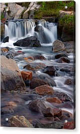 Edith Creek Mt Rainier National Park Acrylic Print by Bob Noble Photography