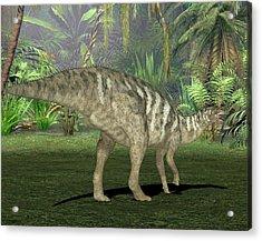 Edmontosaurus Dinosaur Acrylic Print by Friedrich Saurer