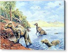 Edmontosaurus Dinosaurs Acrylic Print