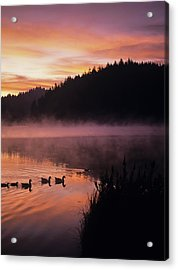 Eel Lake Reflects The Dawn Sky Acrylic Print by Robert L. Potts