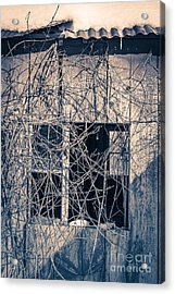 Eerie Old Shack Acrylic Print by Edward Fielding